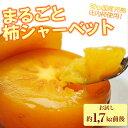送料無料!まるごと柿シャーベット約1.7kg前後 ※冷凍柿、...