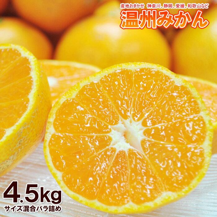 温州みかん 約4.5kg バラ詰め ※ミカン、みかん、柑橘、訳あり、産地おまかせ
