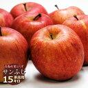 送料無料 葉とらず サンふじ 【家庭用】約15kg(42〜54個) ※青森産、直送、りんご、リンゴ、林檎、サンふじ