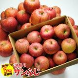 送料無料 訳あり サンふじ 約5kg バラ詰め 林檎、りんご、リンゴ、ふじ、フジ