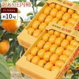 訳あり 庄内柿 約10kg(5kg×2箱)※訳あり、柿、かき、カキ、種なし柿、産直、山形産