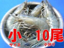 tenshi_4050_10