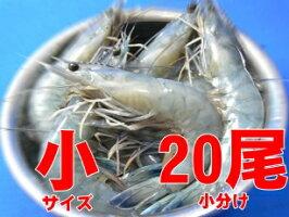 tenshi_4050_20