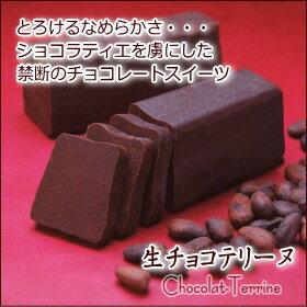 生チョコテリーヌ 〈1本入〉送料込【ラッピング済みの為包装紙不可】