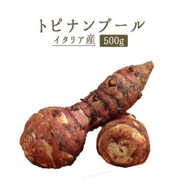 トピナンブール(キクイモ 菊芋) topinambour<フランス>【500g】