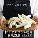【お徳用 訳あり】ホワイトアスパラ アスパラ  露地栽培 (折れ・先つぶれ)<フランス産> 【約500g】【冷蔵品】※根元の部分も含まれる場合がございます。