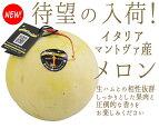 【日本初上陸】イタリアマントヴァ産メロン(最高糖度13度)