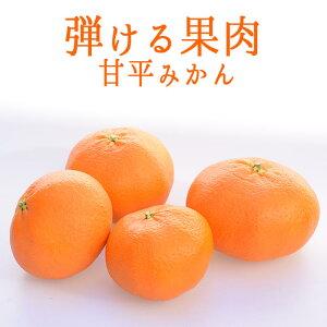 甘平 かんぺい みかん 愛媛みかん <愛媛県産>【1kg】