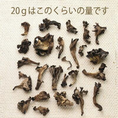 【あす楽】ドライトランペット(黒ラッパ茸)乾燥きのこ<フランス産>【20g】】【常温品】【常温/冷蔵混載可】