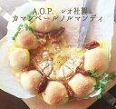 カマンベール・ド・ノルマンディ(白カビチーズ)A.O.Pカマンベール<フランス産>【250g】【冷蔵品】