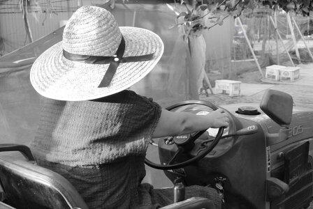 梨市川産千葉県産地直送梨伝統の味【市川の梨新高5〜6玉個入り】30年に一度の当たり年プレゼントギフトお彼岸贈り物ハロウィーン10P30May15
