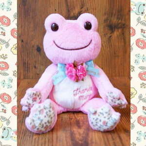 プレゼントにぜひ♪かえるのピクルス 母の日 2015 のビーンドールです!!【pickles the frog】 ...