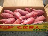 【徳島県産】送料無料・鳴門金時さつま芋 2Sサイズ 5kg
