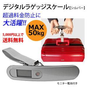 【クリックポスト(送料200円)OK】コンパクト ラゲージチェッカー(SV) 5,000円以上送料無料