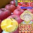 【りんごセール】【送料無料】【CA貯蔵】糖度13度以上!長野