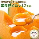 お中元 富良野メロン 大玉Lサイズ2玉詰[2玉約3.2kg]