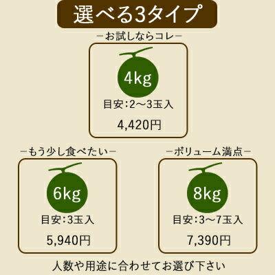 他とは違う!メロン専門店の訳あり富良野メロン約4kg[2〜3玉入]送料無料赤肉メロン果物フルーツ