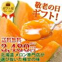 敬老の日ギフト 専門店の富良野メロン 大玉Lサイズ1玉詰 赤...