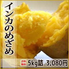 【送料無料】黄金のじゃがいもインカのめざめ!濃厚な味、さつまいも?栗みたい!自然の甘みや...