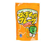 かぼちゃフレーク/100gTOMIZ(富澤商店)季節商品秋