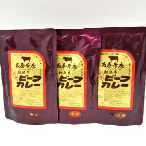 松阪牛ビーフカレー