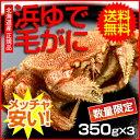 【送料無料】北海道産ボイル毛がに【約350g×3】【かに】【カニ】【蟹】【毛がに】【北海道】【正規品】【お得】 - 函館海鮮食材