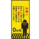ラッピング ラッピング用品 プチギフト 【メッセージタグとタ...