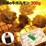 【送料無料】飛騨のホルモン焼きセット岐阜県産300g