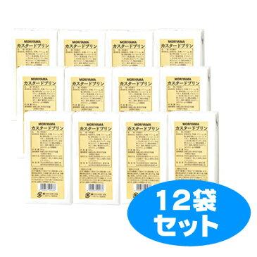 【送料無料】守山カスタードプリン (500ml×12個)【賞味期限残25日以上をお届けします】