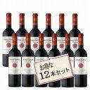 ティエラ ヌエバ 赤ワイン トラディッション カベルネソーヴィニヨン×12本 送料無料