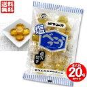 ロマンス製菓 塩べっこう飴 120g ×【20袋】セット商品
