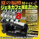 夏の福樽ジェネカフェ台数限定黒セット(生豆8kg+Mサイズ20kg樽付)