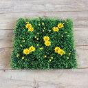 いつでもお買い得!花付き 人工芝 ガーデンマット プチフラワー 1枚 イエロー