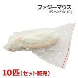 冷凍 ファジーマウス 10匹