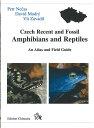 チェコの両生類と爬虫類:英語本