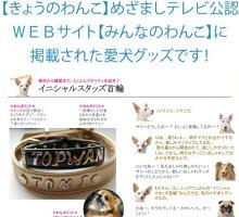 TOPWANイニシャルスタッズ首輪XLサイズ名前入り首輪オーダーメイド大型犬
