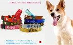 刺繍迷子首輪Sサイズ超小型犬小型犬名前入電話番号ネーム首輪首輪タイプの迷子札Dカンを付けなければ大型犬の迷子札としても使えます。刺繍の関係で首周り16cmから制作になります。