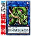 【中古】 [Ultra] 捕食植物ヴェルテ・アナコンダ (8_L/闇2/LVP3-JP071)