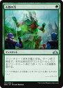 トレカ通販 トレトク楽天市場店で買える「マジックザギャザリング MTG 緑 大群の力 GRN-137 アンコモン 【ランクA】 【中古】」の画像です。価格は20円になります。