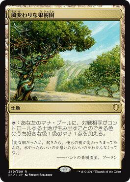 マジックザギャザリング MTG 風変わりな果樹園 C17-249 レア 【ランクA】 【中古】