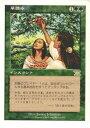 トレカ通販 トレトク楽天市場店で買える「マジックザギャザリング MTG 緑 日本語版 早摘み/Early Harvest 6ED-222 レア【ランクA】【中古】」の画像です。価格は40円になります。