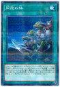 遊戯王 同胞の絆 SR05-JP030 ノーマルパラレル 【ランクB】 【中古】