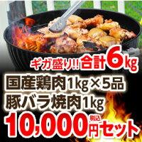 4種5品から自由に選べる国産鶏肉&豚バラ焼肉BBQセット!!!