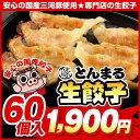 ◆生餃子◆とんまる餃子60個♪自慢の味をご家庭へお届け♪【ぎょうざ】【ギョウザ】【餃子】【ギョーザ】