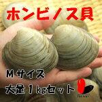 ホンビノス貝1キロMサイズ(約11〜14粒)【酒蒸し】【バーベキュー/パーティー】