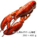 【冷凍】ボイル済みオマール海老 350〜400g 4尾セット
