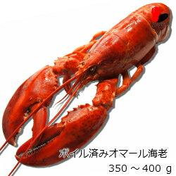 【冷凍】ボイル済みオマール海老 350〜400g 6尾セット