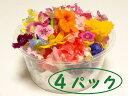 【エディブル・フラワー】4パックセット【日時指定可】【最短ご...