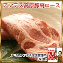 ◆豚ロース◆ アンデス高原豚肩ロース1枚70g(チリ産・冷凍)トンテキ・トンカツ用 豚ロース肉【ポイント10倍】