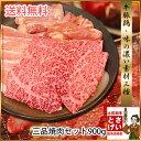 牛肉 豚肉 鶏肉が入って送料無料三品焼肉セット900gバーベキューセット BBQ セット 焼肉 ギフト プレゼント バーベキュー 3種 国産 楽ギフ_のし